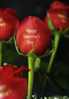 Người Mỹ có thể chi 18 tỷ USD dịp Valentine