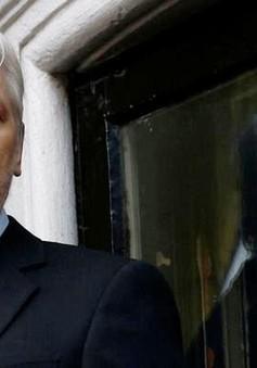 Wikileaks tuyên bố giúp các công ty công nghệ phòng vệ