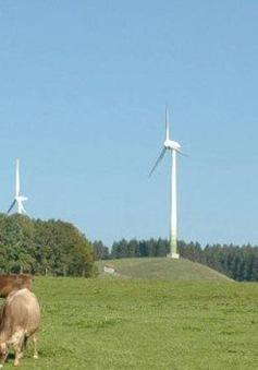 Khám phá ngôi làng tự sản xuất điện ở Đức