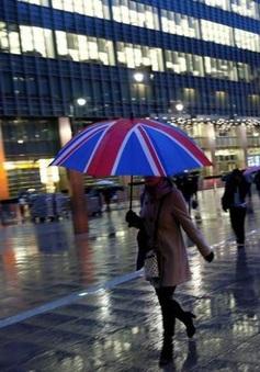 Lao động châu Âu làm việc tại Anh đạt mức kỷ lục bất chấp Brexit
