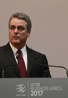 Khai mạc Hội nghị Bộ trưởng WTO