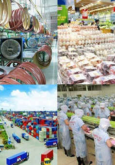 10 năm gia nhập WTO: Việt Nam đã phát triển mạnh mẽ hơn