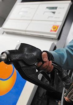 Petrolimex bắt đầu bán dầu diesel tiêu chuẩn Euro V từ năm 2018