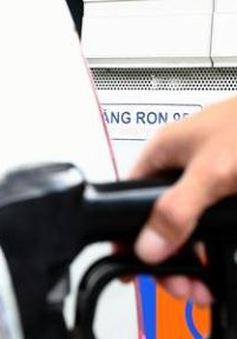 Bắt đầu đưa vào sử dụng xăng RON95 - IV giảm khí thải môi trường