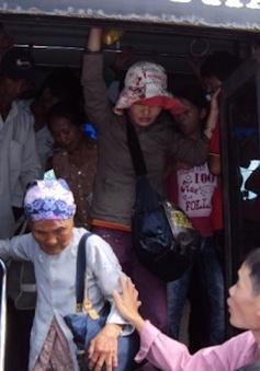 TP.HCM bắt đầu miễn phí xe bus cho người già