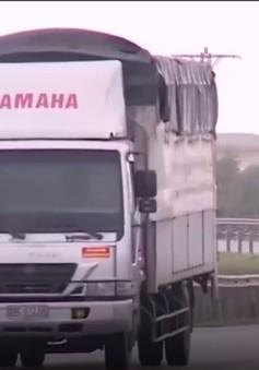 Quảng Bình chấn chỉnh tình trạng xe chở quá khổ quá tải