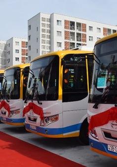 Đà Nẵng: Khai trương dịch vụ xe bus công cộng và bãi đỗ xe