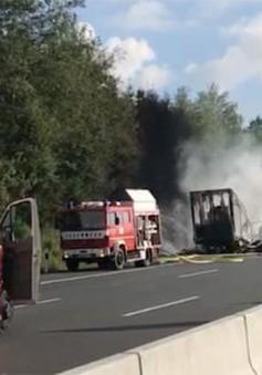Tai nạn xe bus tại Đức, hàng chục người bị thương