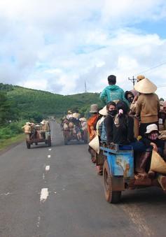 Tìm giải pháp quản lý xe máy kéo trên địa bàn Tây Nguyên