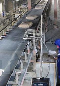 Giảm thuế xuất khẩu 5%: Có cứu được ngành xi măng?
