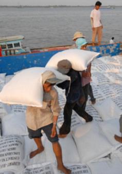 Cơ hội mở rộng thị trường xuất khẩu gạo