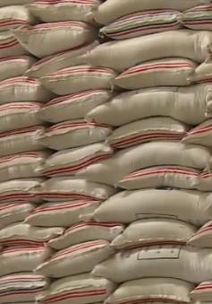 Xuất khẩu sang Trung Đông - châu Phi dự kiến tăng 15% - 20%