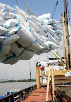 Xuất khẩu gạo cuối năm sẽ có nhiều khó khăn