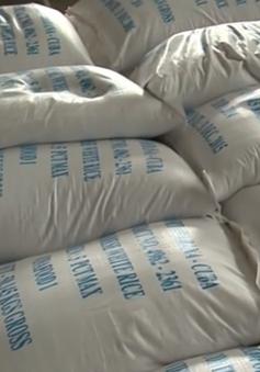 200.000 tấn gạo được xuất khẩu chính ngạch sang Trung Quốc