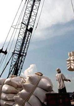 Xin giấy phép xuất khẩu gạo tốn 20.000USD: Bộ Công Thương vào cuộc