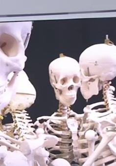 Ấn Độ bắt 8 đối tượng bị tình nghi buôn xương người trái phép
