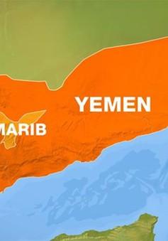 Mỹ tiêu diệt 7 tay súng Al-Qaeda tại Yemen