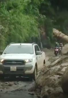 Yên Bái: Tỉnh lộ 174 cơ bản được thông tuyến