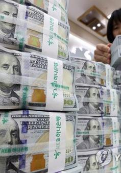 Hàn Quốc: Dự trữ ngoại hối tháng 6/2017 đạt kỷ lục