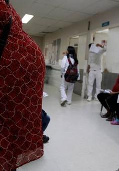 Các bệnh viện tại Brazil sẵn sàng ứng phó dịch bệnh do virus  Zika