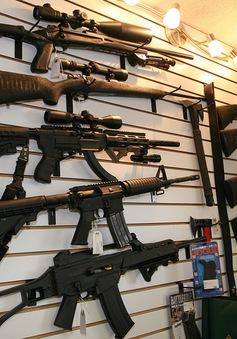Thụy Sĩ kêu gọi người dân giao nộp súng đạn