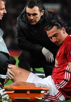 """Ibrahimovic đã mất quyền """"cành cao"""" với Man Utd!"""