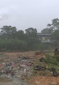 Thừa Thiên - Huế: Nhiều nhà máy ở khu công nghiệp xả thải gây ô nhiễm