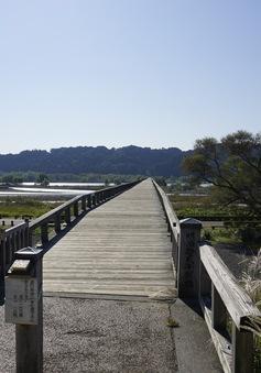 """Sắc màu Nhật Bản - Tập 2: Khám phá những điều """"số 1 Nhật Bản"""" ở tỉnh Shizuoka"""