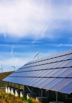 EU đầu tư mạnh cho hạ tầng năng lượng sạch