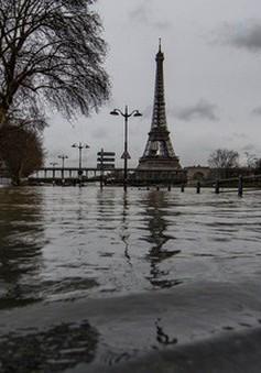 Paris ngập sâu trong nước lũ, hàng trăm người phải sơ tán