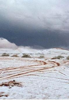 Tuyết rơi bất ngờ tại Arab Saudi