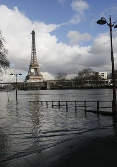 Pháp: Lũ lụt tại Paris chạm ngưỡng 6m