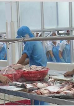 Mỹ từ chối nhập cá tra xông khói Việt Nam