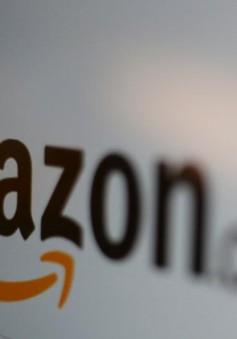 Amazon mở văn phòng tại rừng nhiệt đới