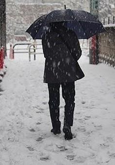 Nhật Bản lại sắp hứng chịu đợt tuyết khắc nghiệt mới