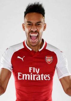 Vi phạm pháp luật, sao Arsenal bị phạt nặng