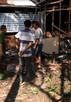 Cà Mau: Nổ đầu đạn khiến 3 người trong gia đình tử vong
