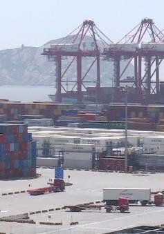 Thặng dư thương mại của Mỹ - Trung Quốc cao kỷ lục