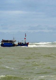 Cứu nạn thành công tàu cá và 7 ngư dân trên vùng biển Bình Định