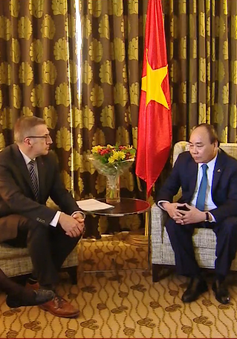 Thủ tướng Nguyễn Xuân Phúc tiếp Chủ tịch Nhóm các Nghị sỹ Đảng Dân chủ Thiên chúa giáo Thượng viện Bỉ