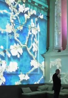 Trình chiếu các tác phẩm của danh họa Van Gogh