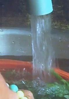 Khánh Hòa: Chậm đầu tư hệ thống xử lý nước, hàng trăm hộ dân dùng nước bẩn