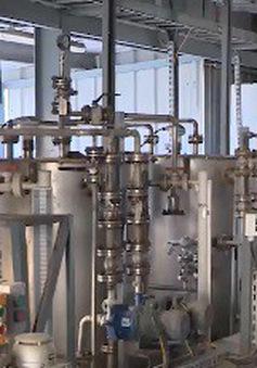 Đường dài để hồi sinh dự án nghìn tỷ nhà máy nhiên liệu sinh học Dung Quất