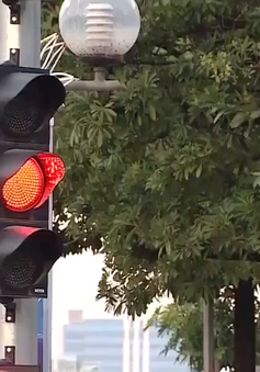 Nếu thông qua quy chuẩn 41 sửa đổi, tất cả phương tiện vượt đèn vàng đều vi phạm