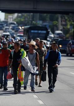 Vì sao hàng nghìn người di cư Trung Mỹ muốn đến Mỹ?