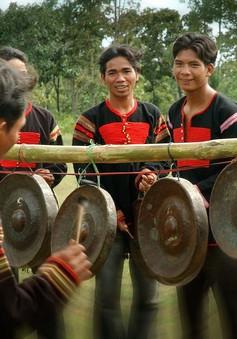 Gia Lai chuẩn bị Festival văn hóa Cồng chiêng Tây Nguyên