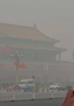 Ô nhiễm không khí ở Trung Quốc khiến hơn 1 triệu người chết trẻ mỗi năm