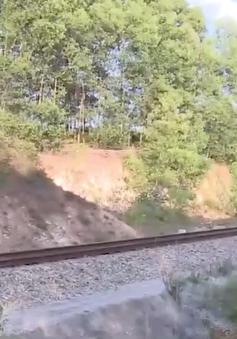 Thừa Thiên Huế: Thi công trái phép gây mất an toàn đường sắt