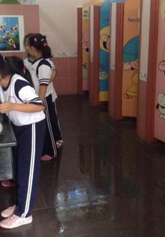 Đà Nẵng: 4 tỷ đồng sửa chữa, xây dựng nhà vệ sinh trường học