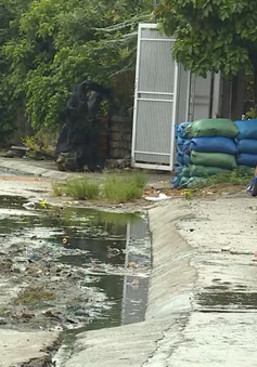 Khánh Hoà: Ô nhiễm vì nước thải từ làng bún